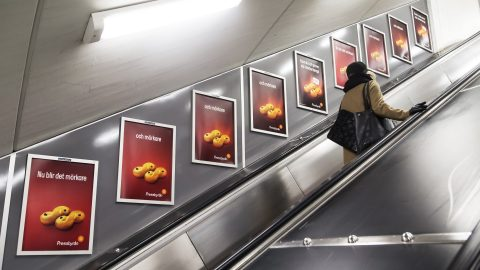 escalator-panel-sv-1.jpg